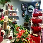 vianočné kvety-gabriella-vranov nad toplou